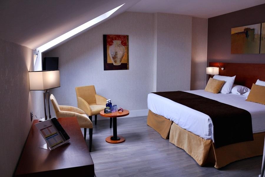 Hotel Puerta De Toledo (f)