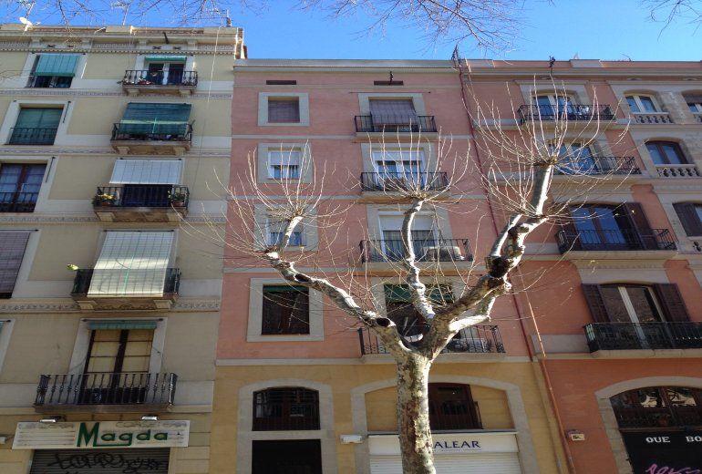 COSY APARTMENT IN BARCELONA (4 GUESTS) - Hotel cerca del Bar Calders