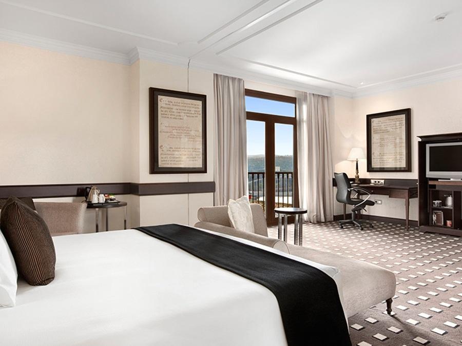 Fotos del hotel - EUROSTARS PALACIO BUENAVISTA